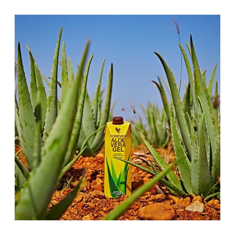 Aloe Vera Gel - Gel de Aloe Vera de la Forever Living Products